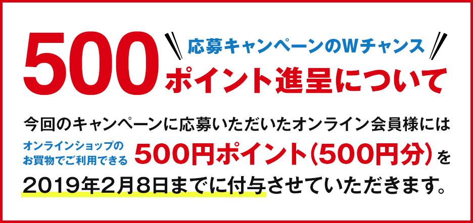 応募キャンペーンのWチャンス「500ポイント進呈」について