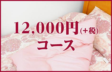 12,000円(+税)コース