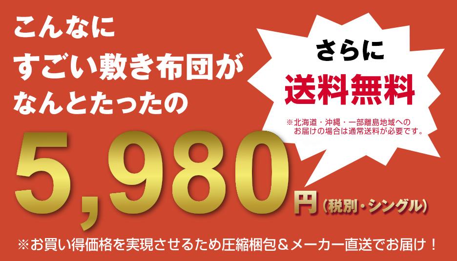 こんなにすごい敷き布団がなんとたったの5,980円(税別・シングル)